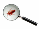 Pest identification services